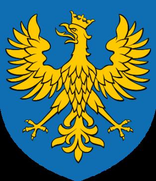 Busy z Polski do Anglii z województwa opolskiego
