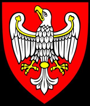 Busy z Polski do Anglii z województwa wielkopolskiego