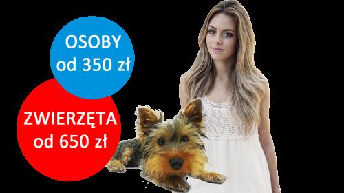 Ceny przewozu osób i zwierząt z Polski do Anglii